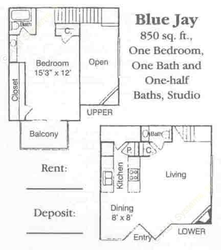 850 sq. ft. A3 U & D floor plan