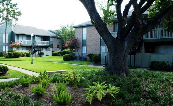 Albion Apartments Angleton, TX